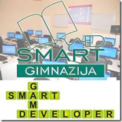 Smart-gimnazija