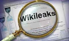 wikileaks-31[1]